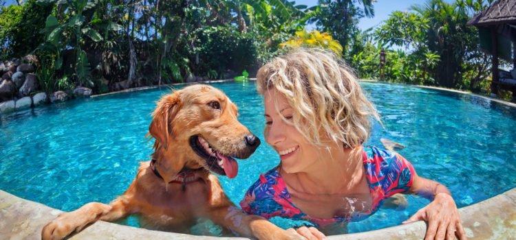 Entenda como aproveitar as férias com o seu animalzinho